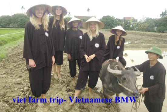 Ha Noi - Viet Farm Homestay 2 Days - 1 Night - Sleep at Viet Farm Homestay
