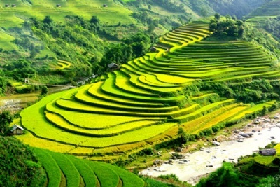 SAPA TREKKING 1 DAY - 2 NIGHTS  BY NIGHT TRAIN